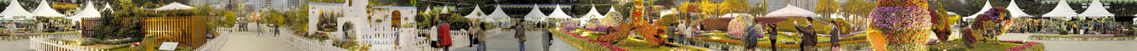 Hong Kong Flower Show 2006 #1